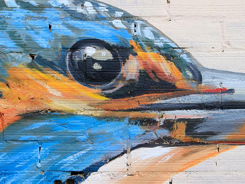 blauet-enciclopedia-mural-2