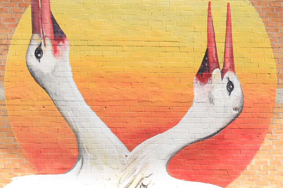 cigonya-blanca-enciclopedia-mural-1