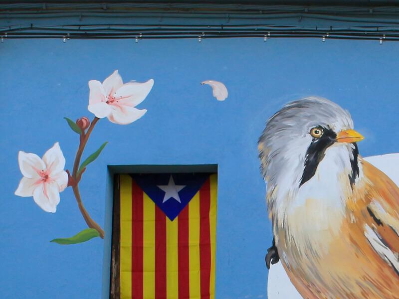marellenga-de-bigotis-enciclopedia-mural-1