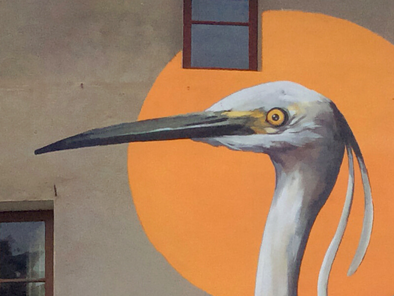 martinet-blanc-enciclopedia-mural-5