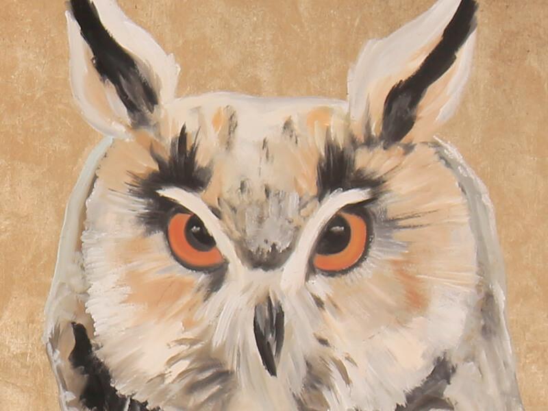 mussol-banyut-enciclopedia-mural-2