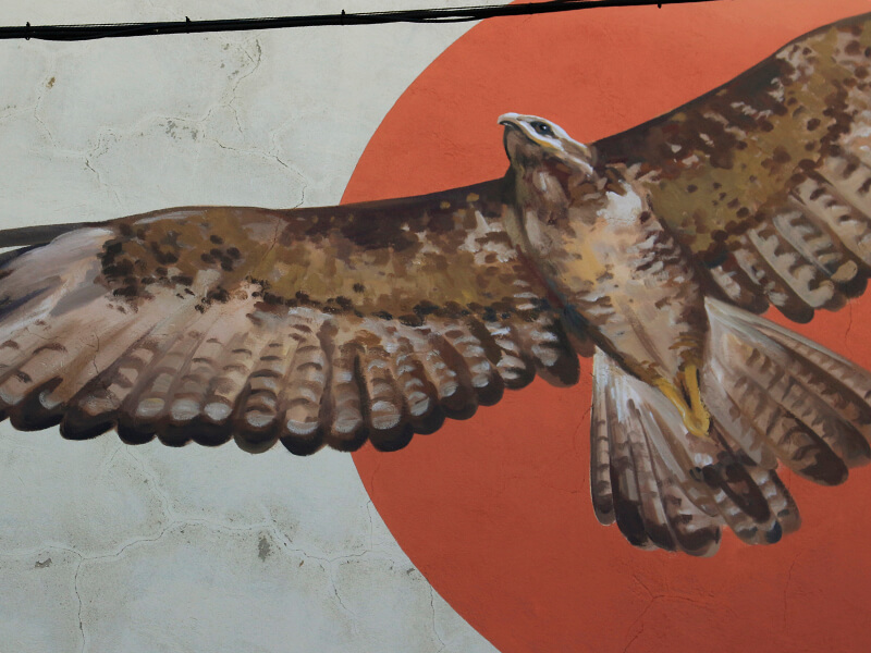 aligot-enciclopedia-mural-4
