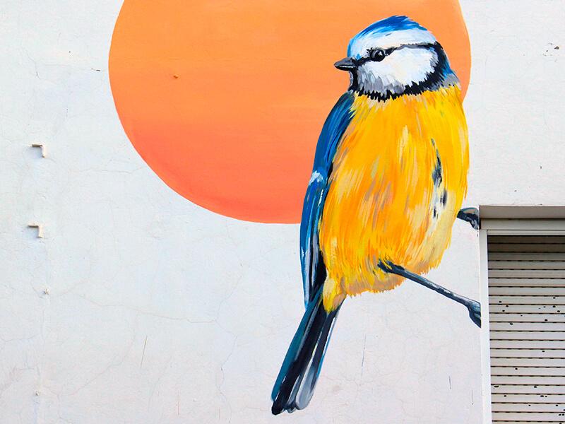 mallerenga-blava-enciclopedia-mural-3