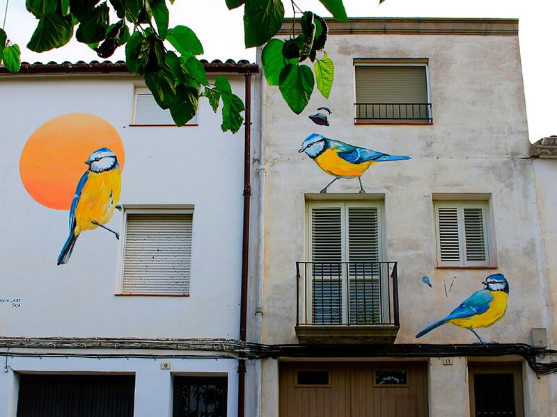 mallerenga-blava-enciclopedia-mural-4