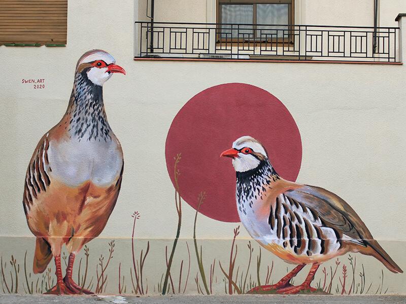 perdiu-roja-enciclopedia-mural-2